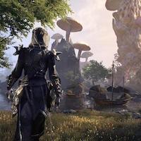 Elder Scrolls Online dev speaks to the power of megaservers in MMO game design